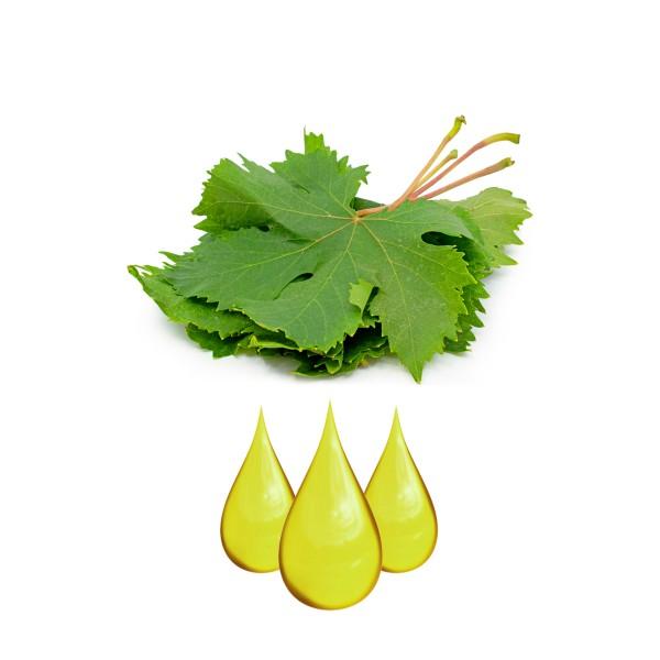 Raisin feuilles Extrait