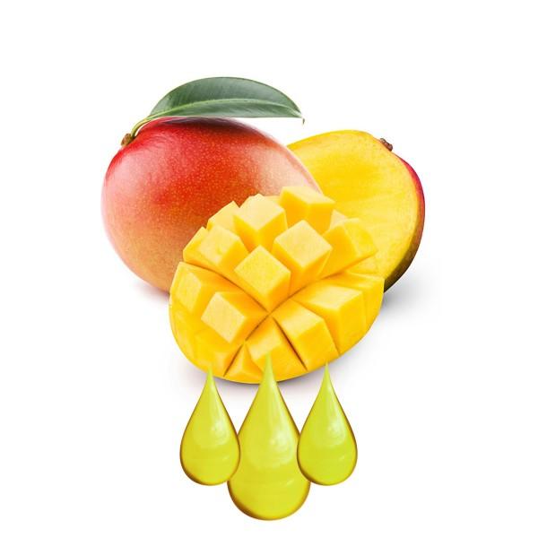 Mangue Extrait