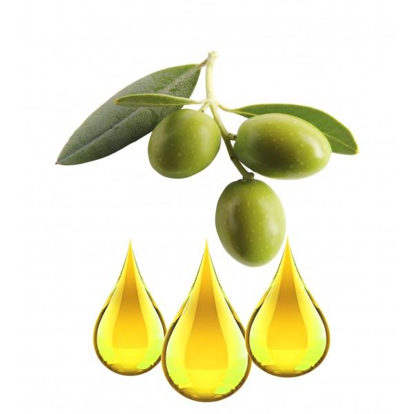 Olive EXTRAIT HYDROGLYCÉRINÉ