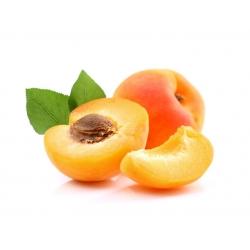Vente en gros Parfum cosmétique Abricot