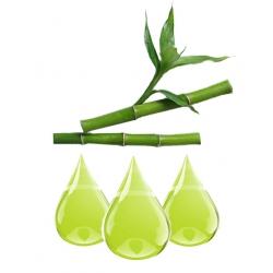 Bambou Extrait
