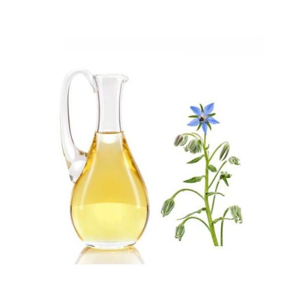 Bourrache huile cosmétique
