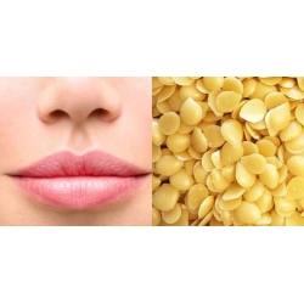 Cire de Candelilla pure et naturelle